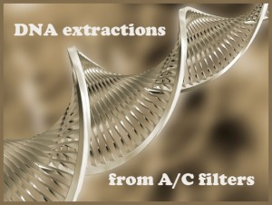 DNAExtraction copy