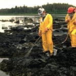 Bioremediation. Source: http://bioremediationremedies.tumblr.com/