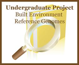 Undergrad Project