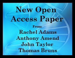 New Paper