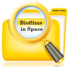 SpaceBiofilm